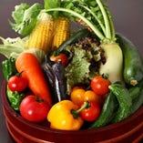 壬生町の生産者から直接仕入れる鮮度抜群な季節の野菜【栃木県】