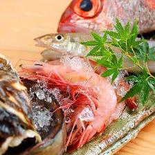 旬の鮮魚を活かした自慢のお造り