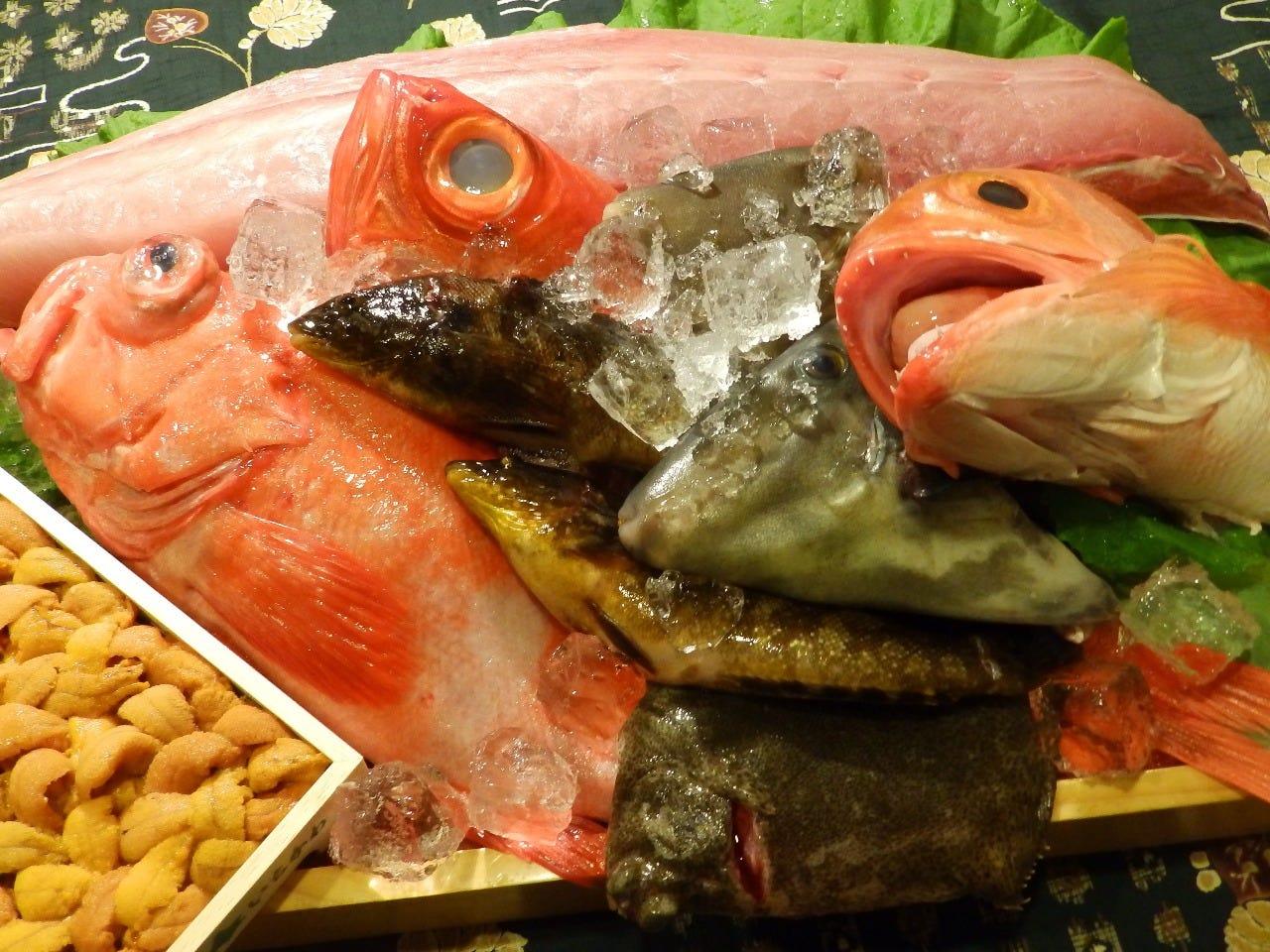 市場と漁港直送の新鮮な魚介