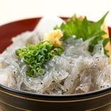 小田原の地魚を中心に10種以上のネタが載ります。