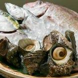 毎朝市場で買い付ける目利きが当店の自慢です。旬の魚をどうぞ