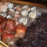 市場直送!旬の食材の素材そのままの味をお楽しみください。