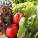 契約農家から直接仕入れた新鮮野菜。