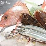 新鮮さにこだわり、全国から仕入れる魚介類【全国各地】