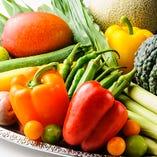 契約農家直送のお野菜