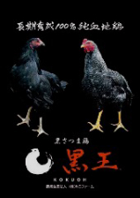 熟成鶏【黒王】の旨味