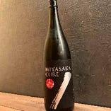 MIYASAKA Core