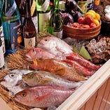 高知・長崎の漁港から直送の極鮮海の幸。希少な魚が多数。