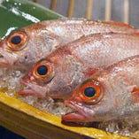 人気の魚「のどぐろ」の刺身