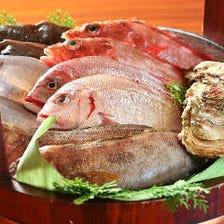 全国より届く産地直送の鮮魚