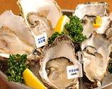 今、旬の一番おいしい牡蛎が 国内外から産地直送!!