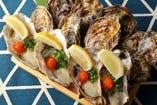 鮮度抜群の生牡蠣&蒸し牡蠣