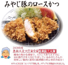 肉・パン粉・揚げ方・ソース