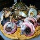 季節の貝の刺身