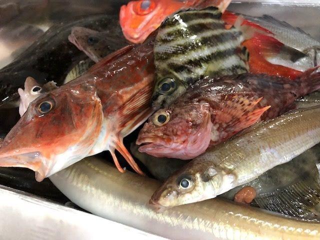 方坊、オコゼ、糸より鯛、カゴカキダイ…地魚満載!