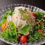 野菜いろいろサラダ