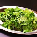 ヤムパクチー(パクチーサラダ)