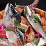 全国各地の美味しい魚だけを入荷【全国各地】