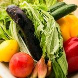 新鮮だからこその彩りの良さや食感を味わえる季節野菜【国内】