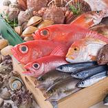 函館直送!小西鮮魚店の新鮮鮮魚【北海道】