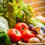産地直送!フレッシュな国産野菜をご提供【全国各地の国産野菜を使用しております。】