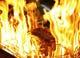 新メニュー藁焼き料理。豪快な炎で燻し焼き!