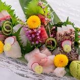 小田原港より直送 鮮魚のOSASHIMI盛合せ