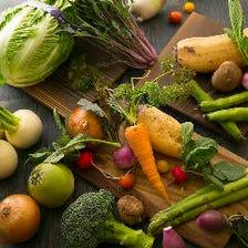 野菜ソムリエが選ぶ旬の野菜