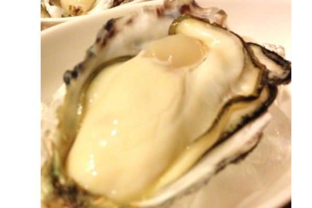 「生牡蠣」&豊富な「牡蠣料理」!