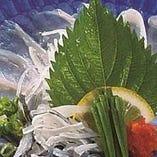 [福を呼ぶ下関のふく] 刺身、ちり鍋、唐揚げなどのふく料理