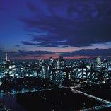 窓の外には宝石をちりばめたような東京の夜景が広がります。
