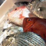 鮮度抜群の海の幸【新鮮な食材】
