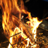 【藁焼き】当店自慢の藁焼きは豪快!素材の味を活かした逸品。