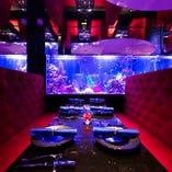 ■「深海」幻想的な空間|1500匹を超える魚に囲まれる神秘な空間