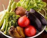 季節野菜も美味しく…