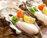濃厚な味わいの生牡蠣!(春~夏は岩牡蠣)