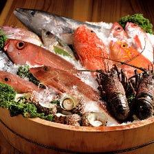 宮崎・日向灘獲れの鮮魚を錦に空輸