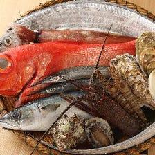 立川で人気の高級鮮魚卸問屋の初割烹