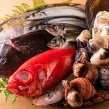 【新鮮魚介】 鮮魚卸問屋ならではの選びぬいた魚介が自慢です