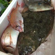 地元の新鮮魚介類