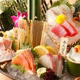 和歌山県串本で獲れた新鮮魚介【和歌山県】