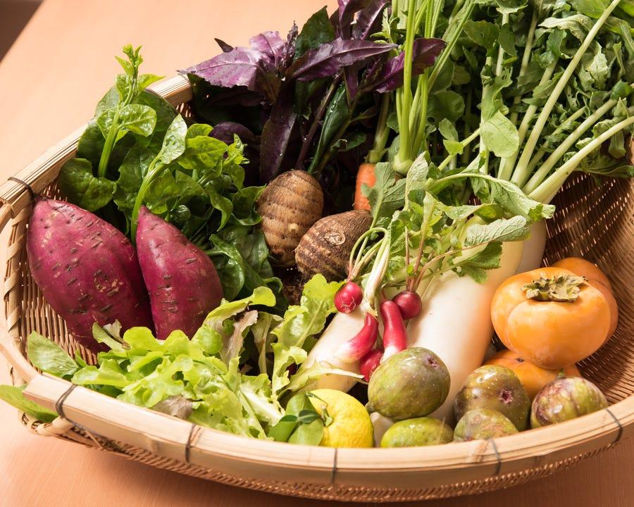 店主一家が自家菜園で育てた野菜!