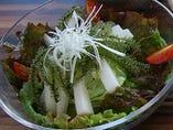 ■プチプチ海ぶどうサラダ