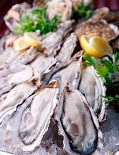 国内外の厳選した生牡蠣&牡蠣料理