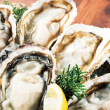 全国各地から厳選した、今美味しい生牡蠣【北海道】