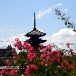店内からは京都らしい眺め、「八坂の塔」がご覧いただけます。