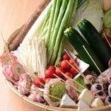 【地産地消】獲れたてお野菜【大阪府】