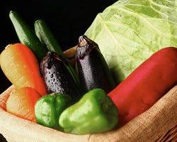 鹿児島直送の新鮮野菜。焼きはもちろん、一品料理でも登場!