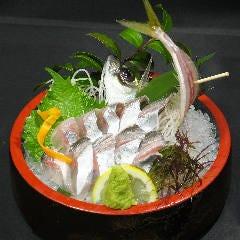 釣って食べれるざうお 横浜・川崎