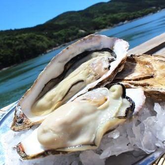 「海のミルク」牡蠣の豊富な栄養